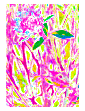 Beautiful pink explosion of nature!  Original abstract art for your home or office, by Suzanne Coleman. ©Suzanne Coleman, all rights reserved.
